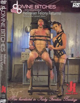 EROTYCZNY FILM PORNO DVD DIVINE BITCHES Hellraiser Felony Returns